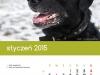2015_kalendarz01