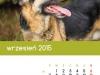 2015_kalendarz09