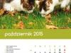 2015_kalendarz10