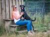 Szaki, czarny pies do adopcji, Poznań, Dopiewo