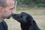 Szaki, pies do adopcji śle pozdrowienia