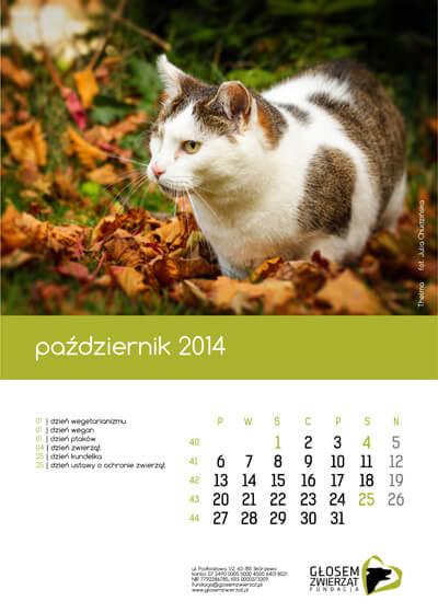 KalendarzFGZ_10_2014 kopia
