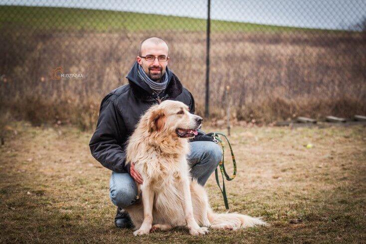 Salik duży pies do adopcji Poznań