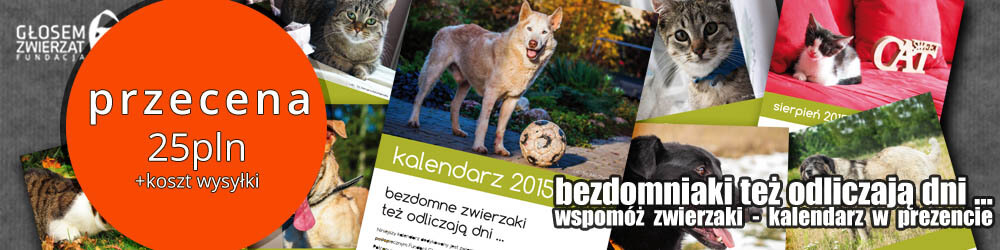 Kalendarz2015Przecena