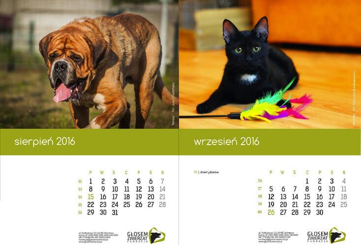 Kalendarz 2016 z naszymi podopiecznymi już dostępny!