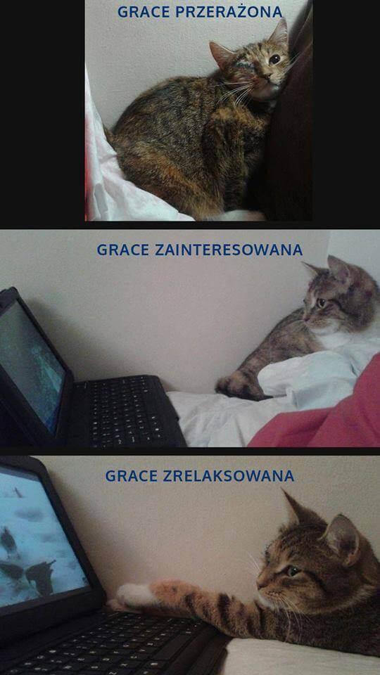 Grace pierwszy dzień w domu tymczasowym