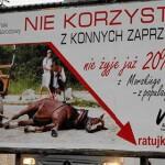 02-09-2016 - kilka slow o powozach konnych