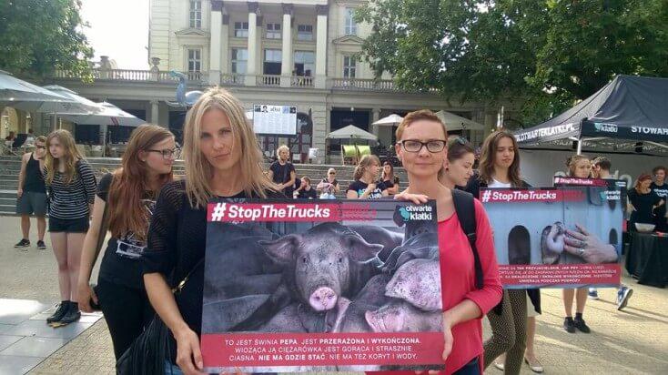 29.08.2016 - udział w akcji #StopTheTrucks organizowanej przez Otwarte Klatki