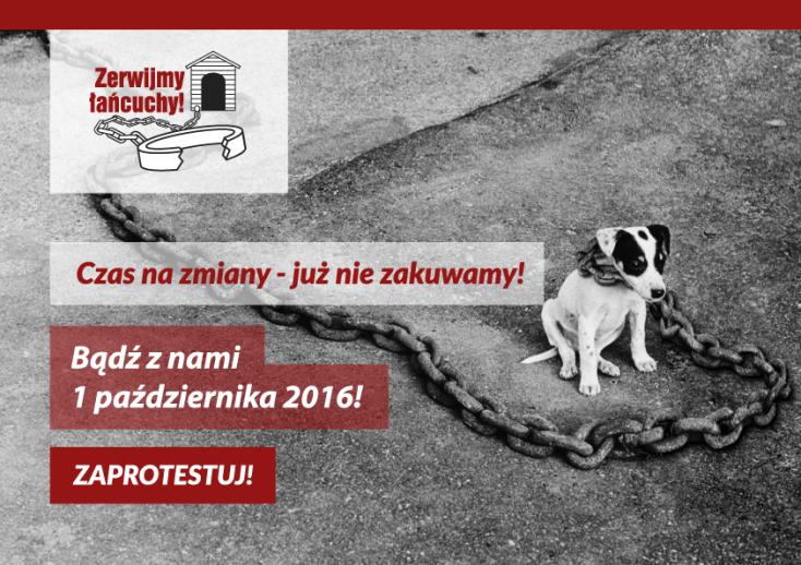 Zerwijmy łańcuchy 2016, Poznań