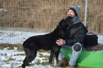 ilaj pies do adopcji poznan