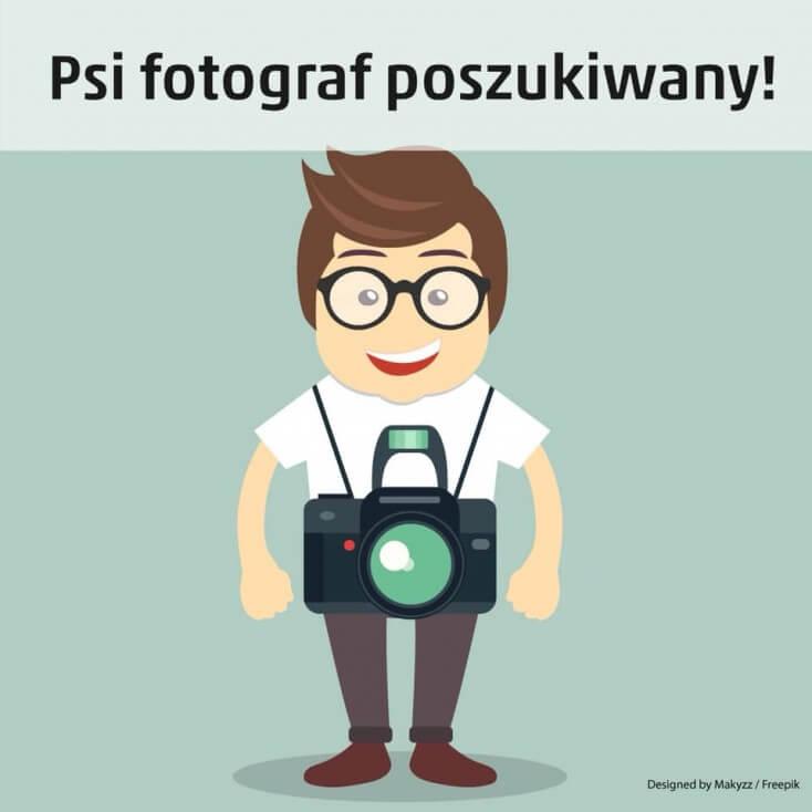 Psi fotograf poszukiwany