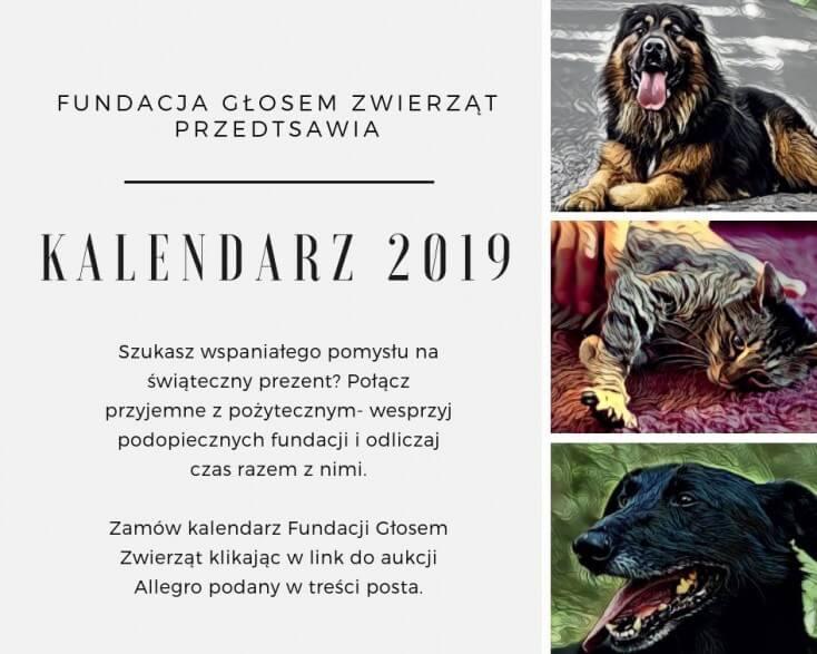 Nowy kalendarz już dostępny