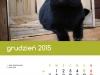 2015_kalendarz12