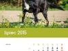 2015kalendarz07