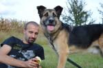 Mikki, pies do adopcji, Poznań