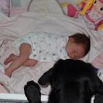 Fado (teraz Elmo) dzielnie opiekuje się małą Julią