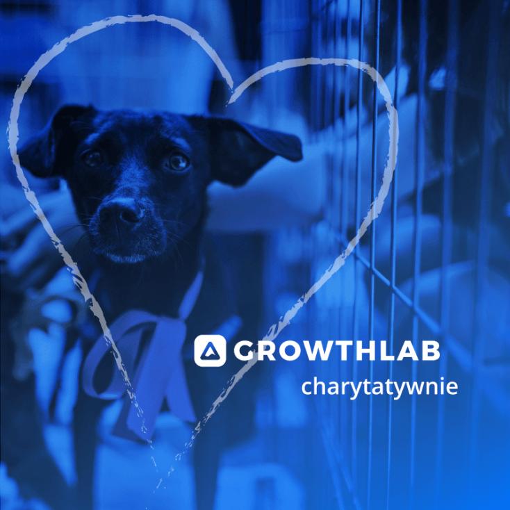 Growthlab.pl - dziękujemy za wsparcie!